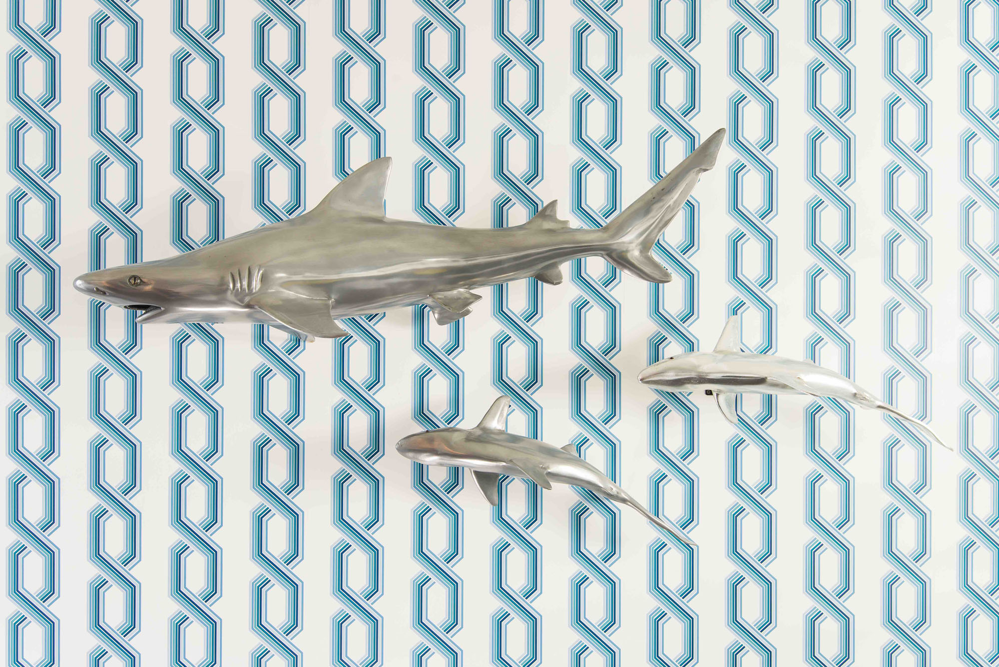 Shark Art Melissa Morgan Design